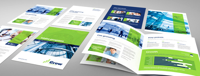 Professional Business Brochures, Creative and Premium Printing Services